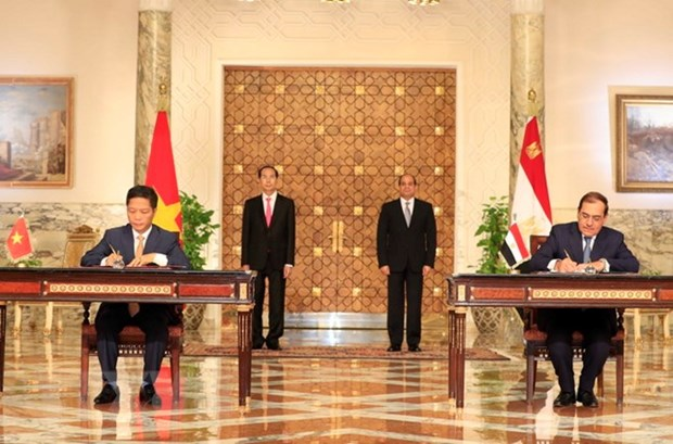 Vietnam, Egypt issue joint statement hinh anh 1