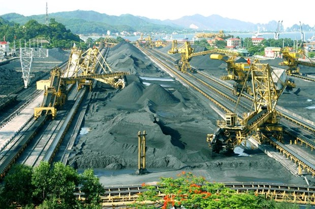 Vinacomin targets 41 tonnes of coal next year hinh anh 1