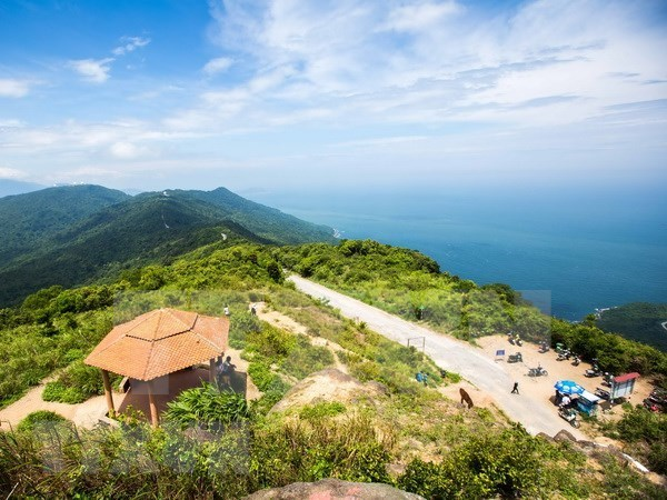 Da Nang – most popular summer destination for RoK tourists hinh anh 1