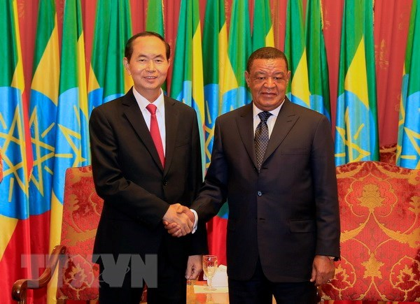 President's visits to Ethiopia, Egypt create momentum for bilateral ties hinh anh 1
