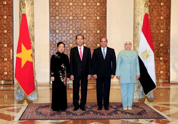 President's visits to Ethiopia, Egypt record upbeat outcomes hinh anh 1