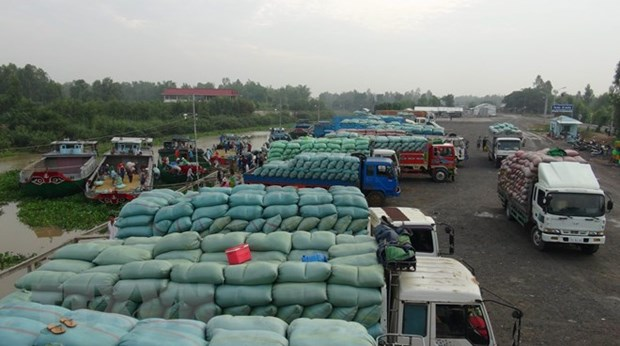 Vietnamese, Chinese localities enhance border customs cooperation hinh anh 1
