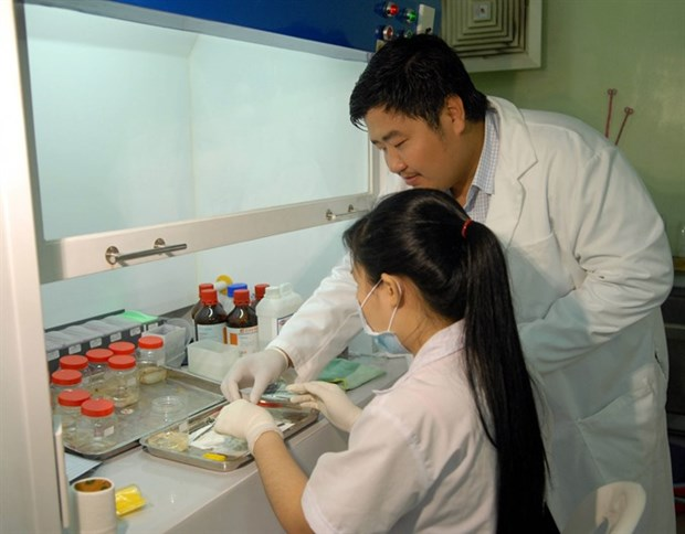 Vietnam develops vaccines for human diseases hinh anh 1