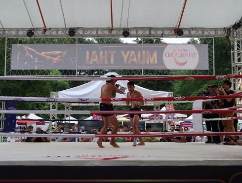 Tenth Thai Festival slated for mid-September in Hanoi hinh anh 1