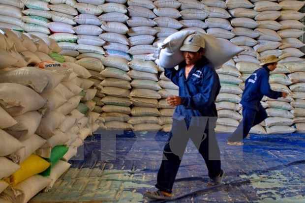Egypt to import 1 million tonnes of Vietnamese rice hinh anh 1
