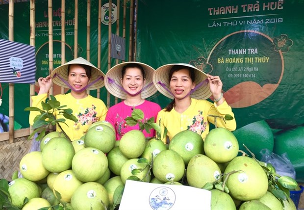 Thua Thien-Hue specialty pomelo is festival highlight hinh anh 1