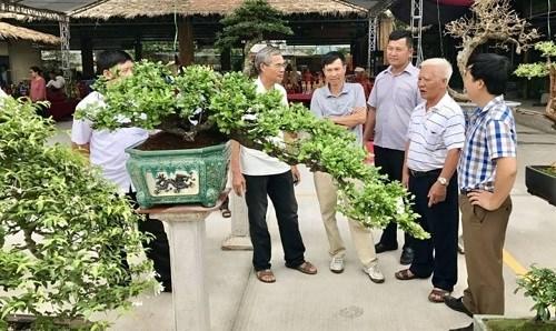 Quang Ninh has first ornamental market hinh anh 1