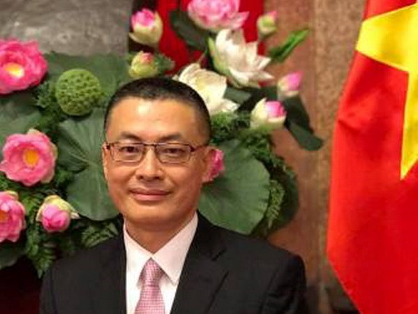 Vietnam to double efforts to boost cooperation with Cambodia: ambassador hinh anh 1