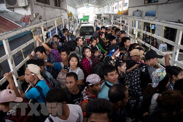Illegal Vietnamese workers in Thailand must return home hinh anh 1