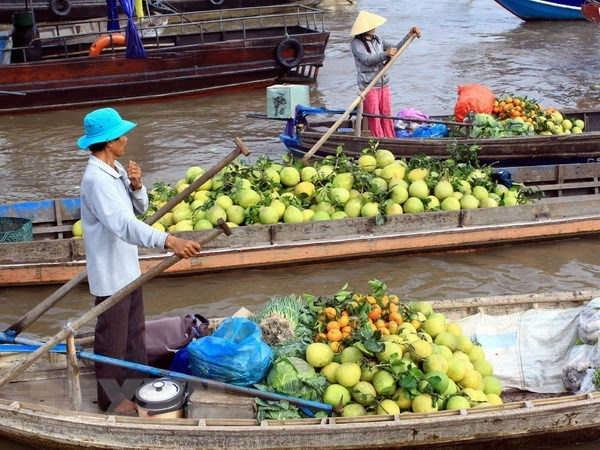 Can Tho serves nearly 83,000 visitors during holidays hinh anh 1