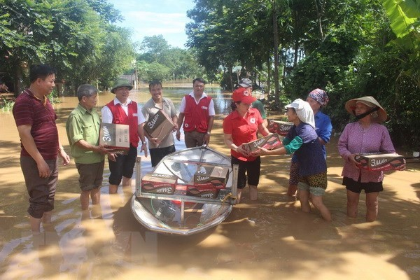 Vietnam Red Cross Society provides aid to flood-hit provinces hinh anh 1