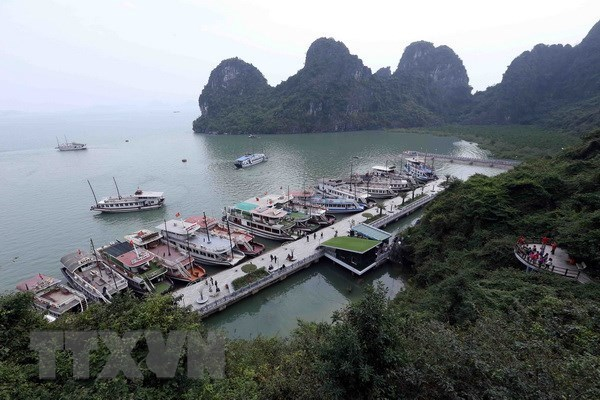 Quang Ninh works to raise quality of tourist ships on Ha Long Bay hinh anh 1
