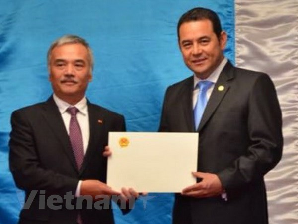 Guatemala President praises Vietnam's role in Asia-Pacific hinh anh 1