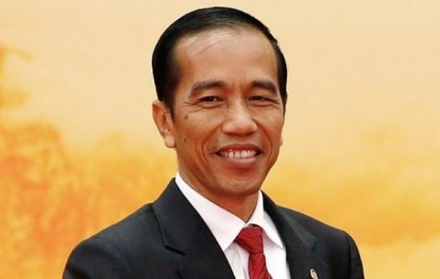 Indonesian President to visit Vietnam next week hinh anh 1