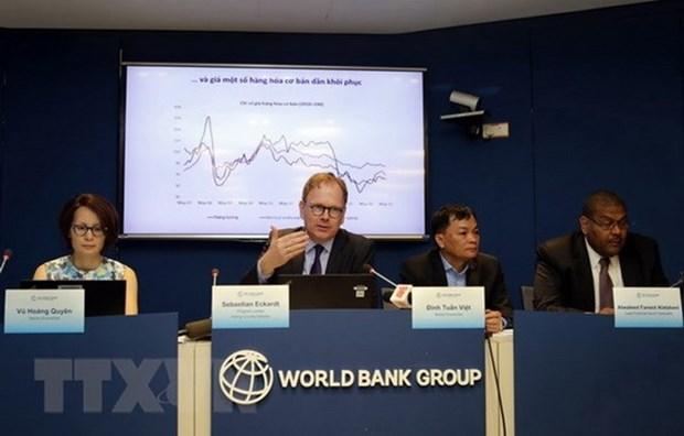 FDI – a successful part in Vietnam's economic development: WB economist hinh anh 1