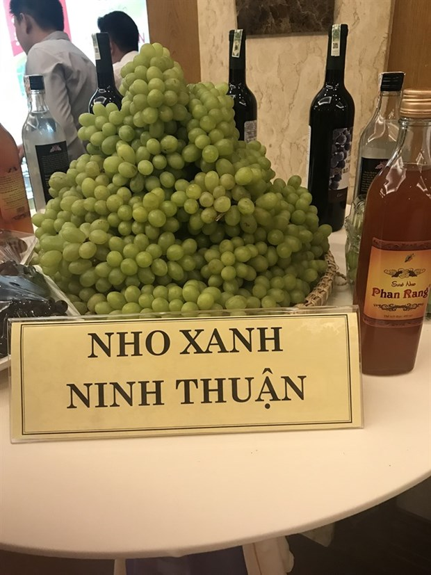 Ninh Thuan seeks ways to develop tourism hinh anh 1