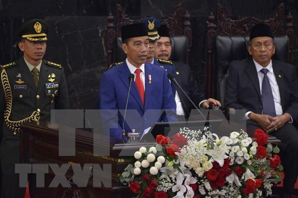Vietnam visit by Indonesian President to push up bilateral relations hinh anh 1