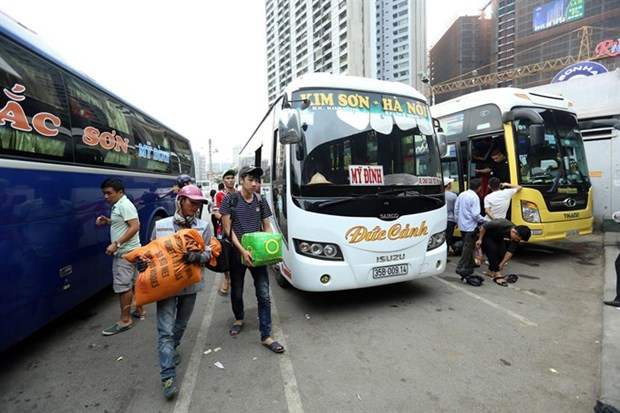 Illegal coach and bus services hinder road transport development hinh anh 1
