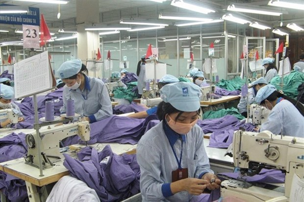 Textile, garment firms lose competiveness hinh anh 1