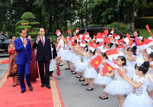 Vietnamese, Indonesian leaders meet the press hinh anh 1