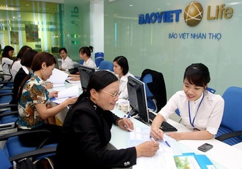 Insurers' total assets reach over 15 billion USD hinh anh 1