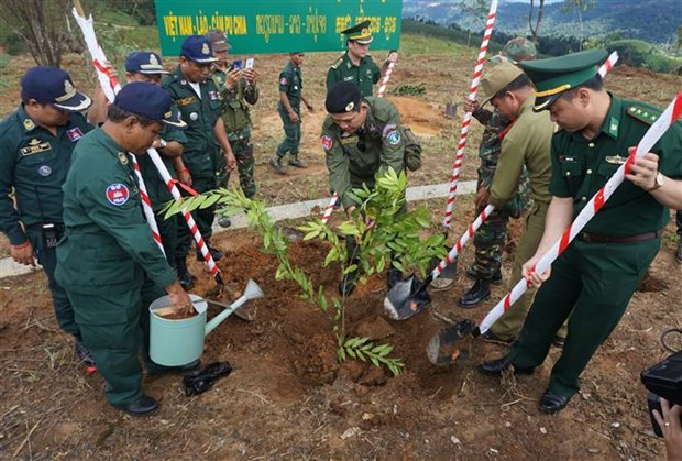 Friendship trees planted at VN-Laos-Cambodia border T-junction hinh anh 1