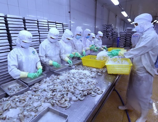 US lowers anti-dumping tariff on Vietnam's shrimp exports hinh anh 1