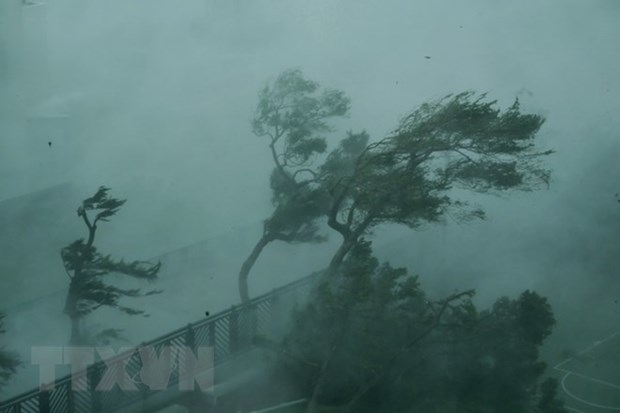 Typhoon Mangkhut wrecks havocs in its way hinh anh 1