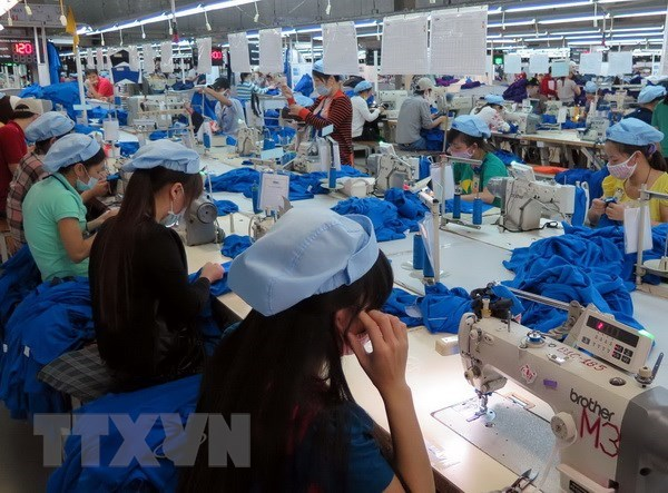 Vietnam's textile and garment industry faces tough seas in 2019 hinh anh 1