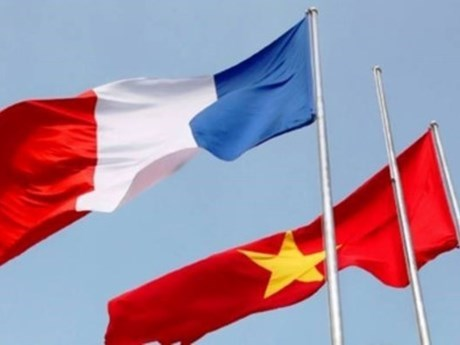 Vietnam-France ties thrive: ambassador hinh anh 1