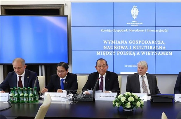 Government encourages Vietnam-Poland cooperation: Deputy PM hinh anh 1