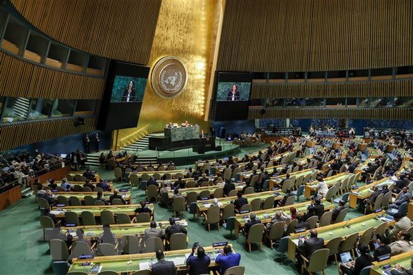 Prime Minister to attend high-level General Debate of UNGA 73 hinh anh 1