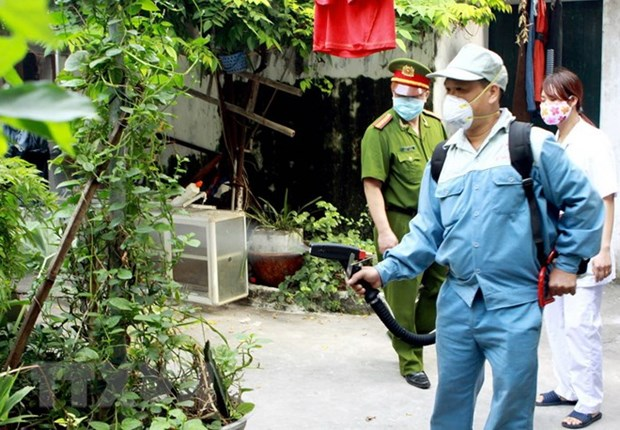 Dengue fever cases in Hanoi fall 96.8 percent hinh anh 1