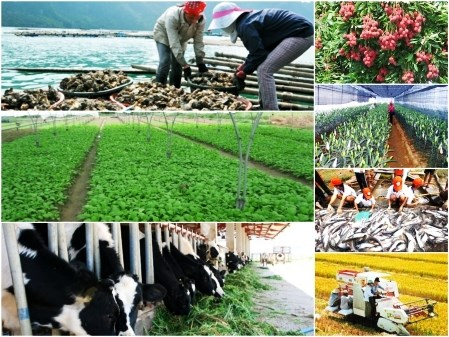 National online conference to be held on agriculture, farmers, rural areas hinh anh 1