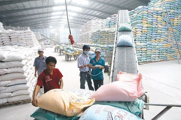 World Rice Conference to be held in Hanoi next month hinh anh 1
