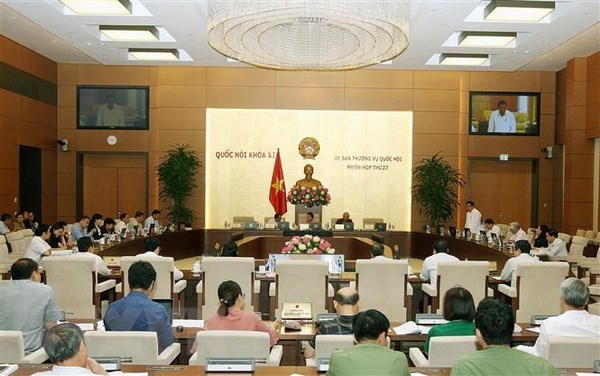 NA Standing Committee sets up two policy monitoring groups hinh anh 1