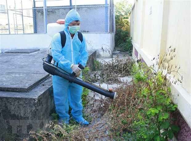 Hanoi continues to take action against dengue fever hinh anh 1
