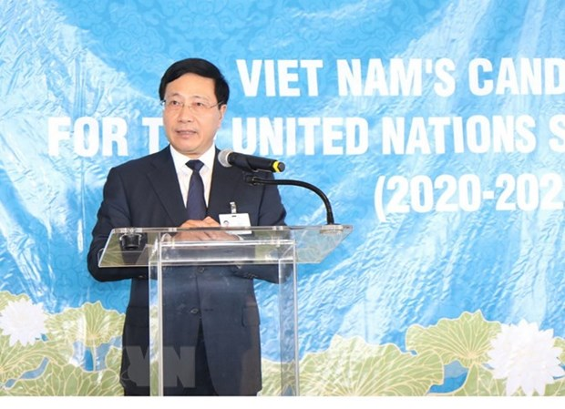 Deputy PM calls for support to UN Security member candidacy, meets foreign officials hinh anh 1