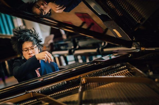 Popular Vietnamese pianist to perform in Hanoi hinh anh 1