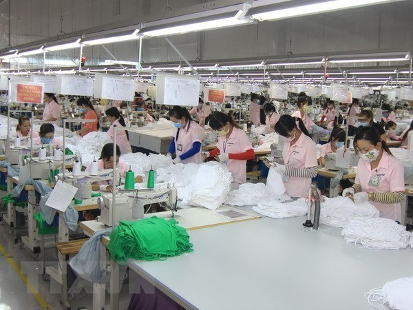 Over 96,600 new firms established in nine months hinh anh 1