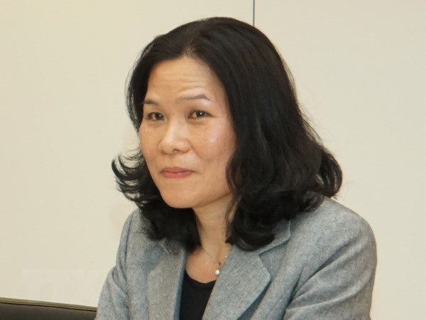 Vietnam chairs ASEAN Committee meeting in Netherlands hinh anh 1