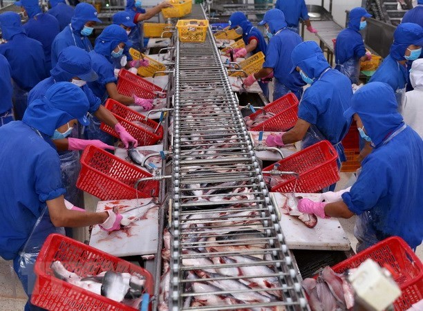 Vietnam's export value to US reaches record high in August hinh anh 1
