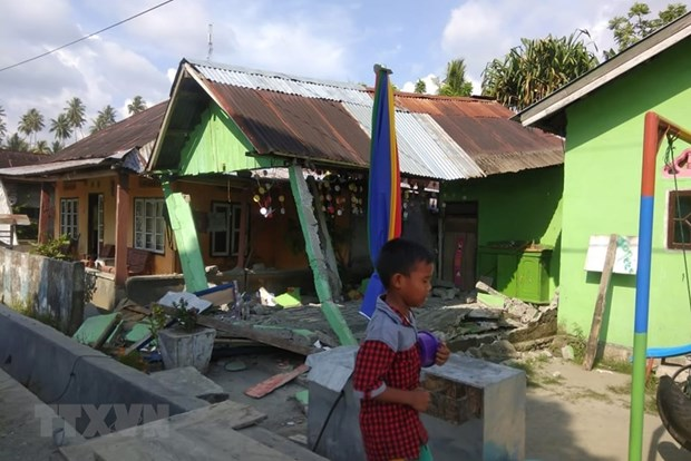 No Vietnamese victims reported in Indonesia quakes, tsunami hinh anh 1
