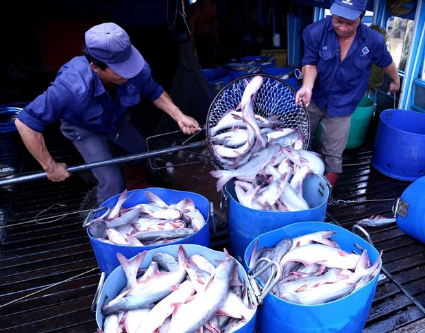 Agro-forestry-fishery exports rise 9.3 percent in nine months hinh anh 1