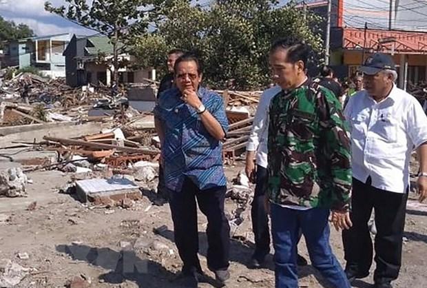 Indonesian President visits quake-hit Palu city hinh anh 1