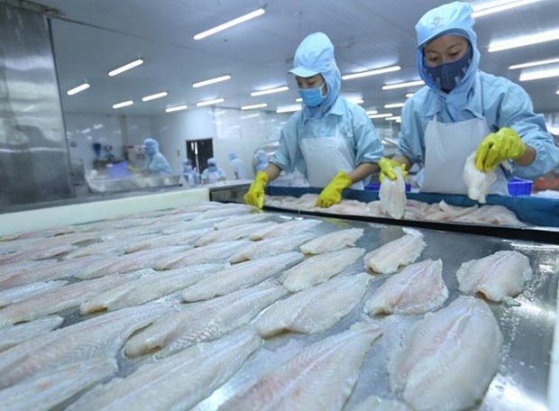 Can Tho records highest nine-month export figure in years hinh anh 1