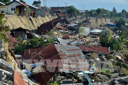 Vietnam offers aid to victims of quakes, tsunami in Indonesia hinh anh 1