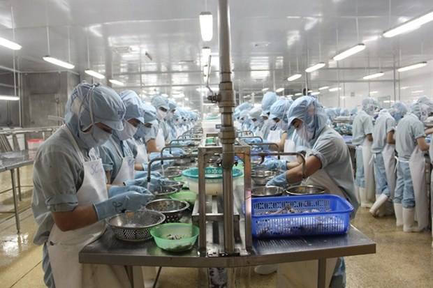VN to introduce criteria evaluating health of enterprises hinh anh 1