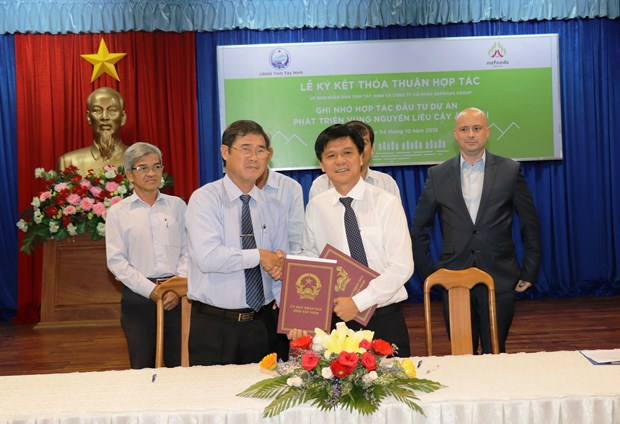 Tay Ninh: Nearly 130 mln USD invested in organic fruit farming zone hinh anh 1