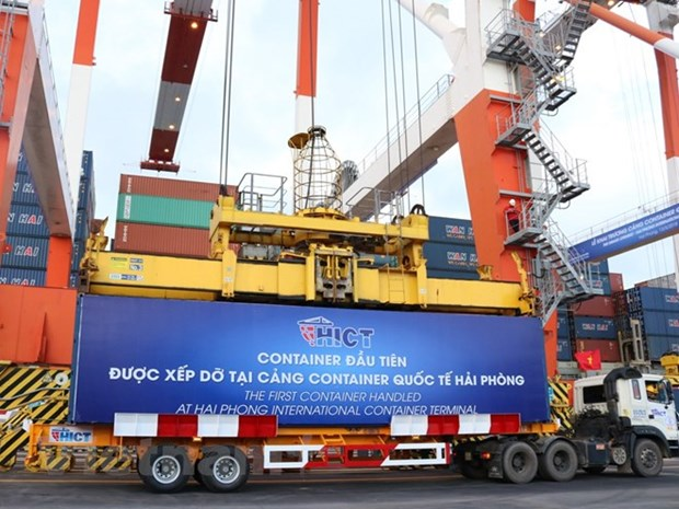 Vietnam plays important role in Mekong-Japan cooperation mechanism hinh anh 1